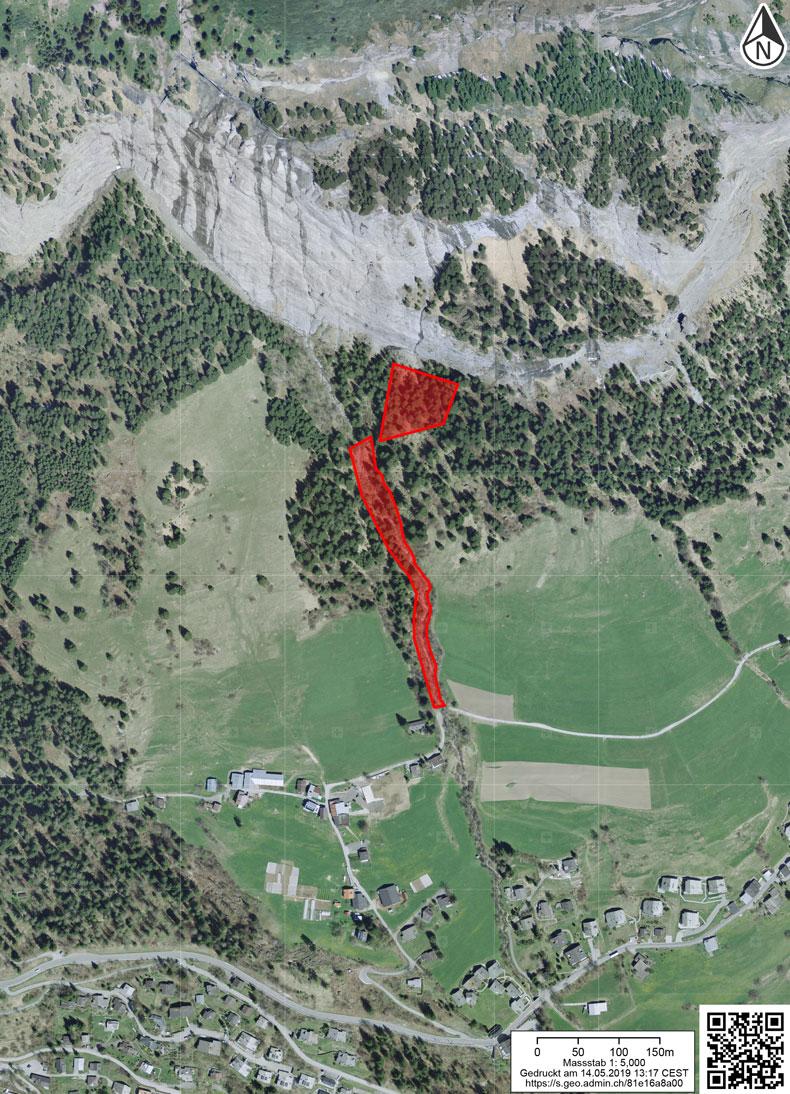 Schutzwald Val Scheia